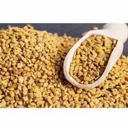 amritanjali Brown Methi Dana(Fenugreek seed), Packaging Type: Gunny Bag, Packaging Size: 50 kg