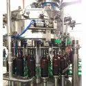 Automatic Rotary Bottle Rinsing Machine