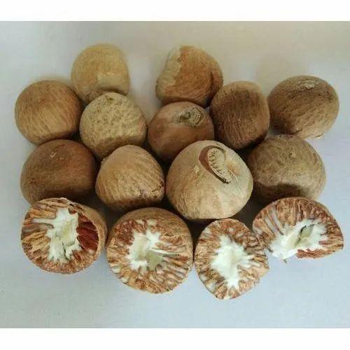 Dried Areca Nut, H K Traders | ID: 23021203697