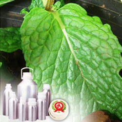 Menthone Natural Crude 95% & 98%