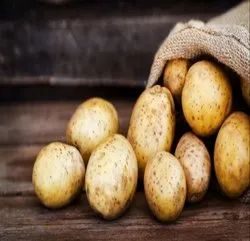 Brown A Grade Ooty Potato, Gunny Bag, Packaging Size: 40 Kg