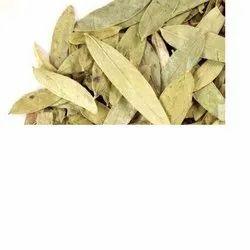 Natural Rasna Leaf