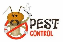 In Industrial Pest Control Container Fumigation