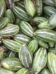 Parwal / Fresh Parwal / Pointed Gourd