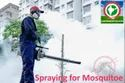 Fogging Spraying For Mosquitoes