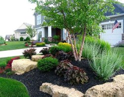 Front Yard Instantly Landscape Contractors, Universal Nursery, Coverage Area: >10000 Square Feet