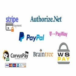 Payment Gateway Integration Services, Netbanking