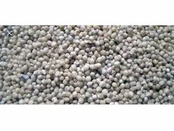 Natural White Oyster Mushroom Spawn Seed, Packaging Type: Pp Bag, Packaging Size: 350 Gram