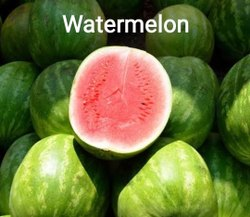 A Grade Fresh Organic Watermelon, Packaging Type: Carton, Packaging Size: 10 Kg