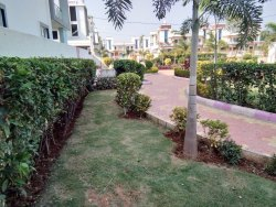 Commercial Garden Development Service
