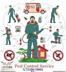 Commercial Anti Termite Pest Control Services