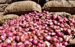 A Grade TamilNadu onion, Packaging Size: 50 Kg, onion Size Available: Small