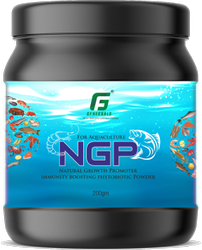 Natural Growth Promoter For Fish & Prawns