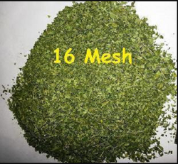 Moringa Leaves Tea Bag Cut(TBC)