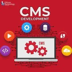 Customer Management System Development Service