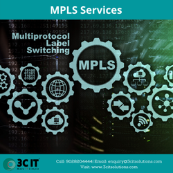 Fiber MPLS Networking Services, India
