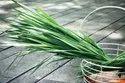 Vetiver Root Oil