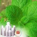 Peppermint Oil 52%