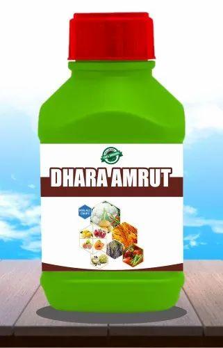 Dhara Amrut