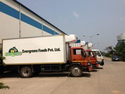Cold Chain Solution, 20 C To -20 C
