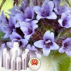Mentha Piperita Oil (Oil Peppermint Ex-Piperita)