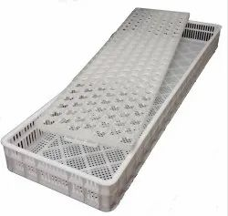 PP Eggs Hatching Tray