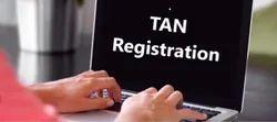 5-10 Days Offline Tan Registration Services