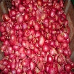 Tamilnadu Red small onion