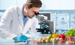 Laboratory Setup Consultancy Services