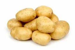 冷藏褐色新鲜马铃薯,箱