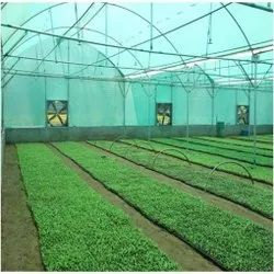 Agricultural Greenhouses