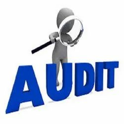 Consulting Firm Retainer Based Account Auditing Services