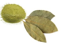 Bay Leaf Powder, Packaging Type: Packet, Packaging Size: 250 Gms,1 Kg And 5 Kg