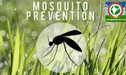 Commercial Mosquito Control Services