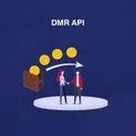Money Transfer API, DMR API