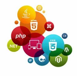 PHP/JavaScript Responsive Website Design, With 24*7 Support
