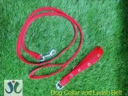 Dog Collar And Belt