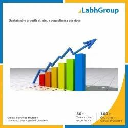 Sustainable Growth Strategy Consultancy Services