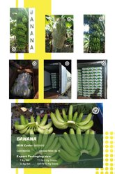 Pan India Green Banana, Packaging Size: 7 Kg,13 Kg