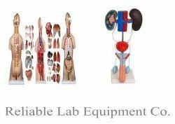 Nursing Instruments For ANM / GNM / B.Sc