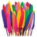 Multi Colored Artificial Birds Feather