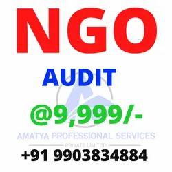 Ngo Audits Services