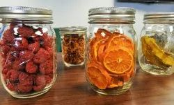 Freeze Dried Product Testing