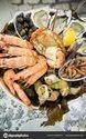Seafood Testing Service