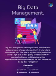 Big Data Management Service