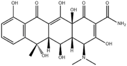 Oxytetracycline HCL (INJ Grade)
