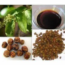 Malkangani Seed Oil