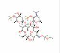Erythromycin Oxime Base