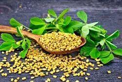 Jangala organics Brown Fenugreek Vendhayam, Packaging Type: pouch, Packaging Size: 100g