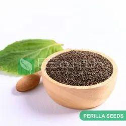 Perilla Seeds Manufacturer